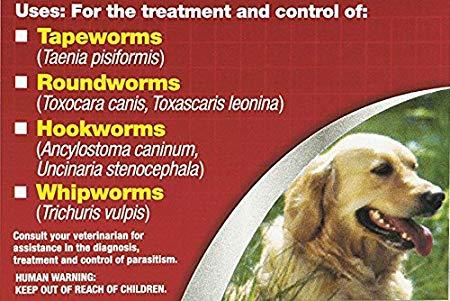 Dog diarrhea treatment