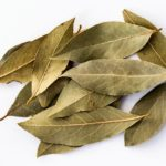 Are Bay Leaves Toxic To Cats?