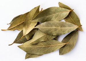 Are bay leaves toxic to cats